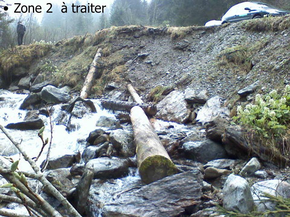 03/03/10 Génie végétal en rivière de montagne Zone 2 à traiter