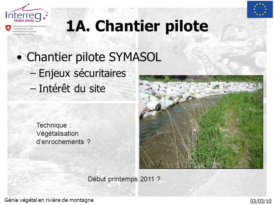 03/03/10 Génie végétal en rivière de montagne Chantier pilote SYMASOL –Enjeux sécuritaires –Intérêt du site Début printemps 2011 .