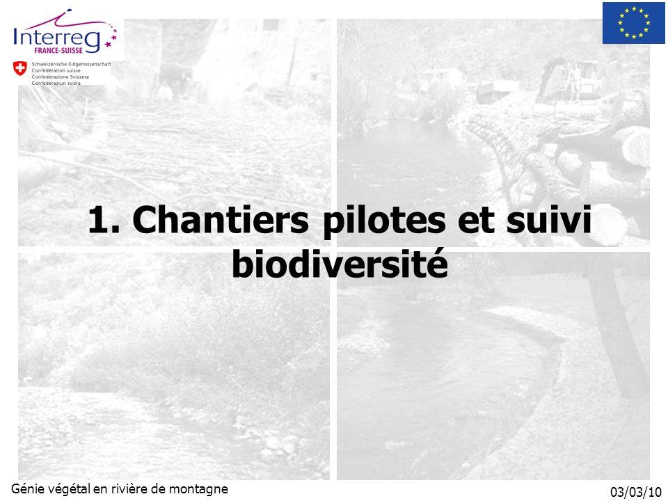 03/03/10 Génie végétal en rivière de montagne 1. Chantiers pilotes et suivi biodiversité