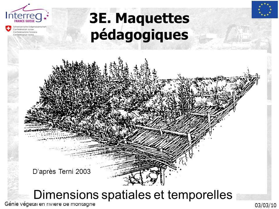03/03/10 Génie végétal en rivière de montagne Daprès Terni 2003 Dimensions spatiales et temporelles 3E.