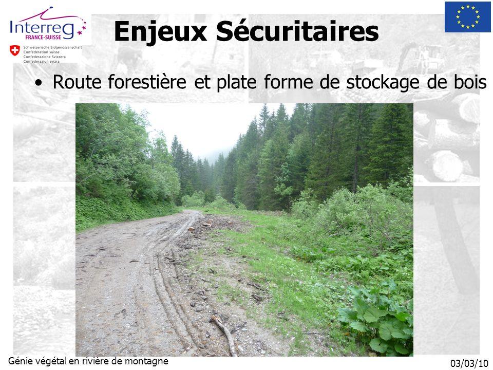 03/03/10 Génie végétal en rivière de montagne Enjeux Sécuritaires Route forestière et plate forme de stockage de bois