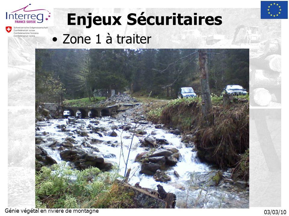03/03/10 Génie végétal en rivière de montagne Zone 1 à traiter Enjeux Sécuritaires