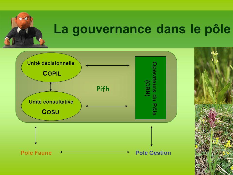 La gouvernance dans le pôle Unité décisionnelle Unité consultative C OPIL C OSU Opérateurs du Pôle (CBN) Pifh Pole GestionPole Faune