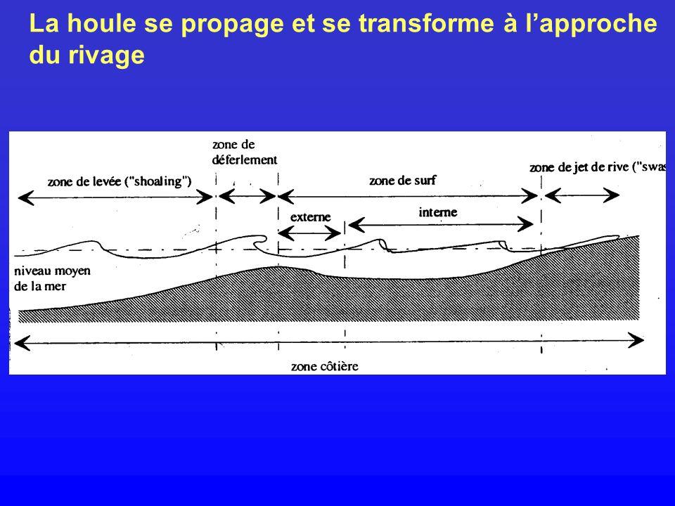 Les expériences ont été réalisées dans un canal à houle vitré Schéma du canal à houle expérimental.