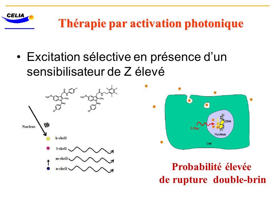 Thérapie par activation photonique Excitation sélective en présence dun sensibilisateur de Z élevé Probabilité élevée de rupture double-brin