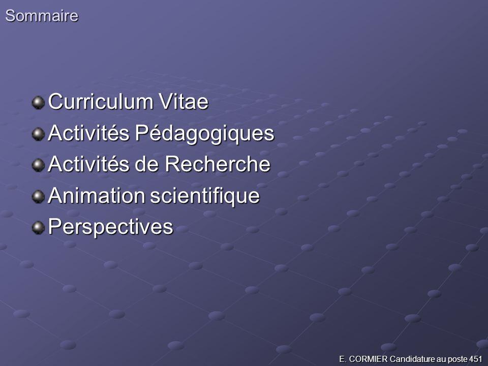 Sommaire Curriculum Vitae Activités Pédagogiques Activités de Recherche Animation scientifique Perspectives E. CORMIER Candidature au poste 451