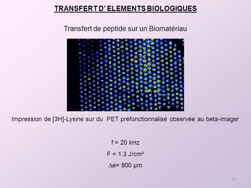 10 Impression de [3H]-Lysine sur du PET préfonctionnalisé observée au beta-imager Transfert de peptide sur un Biomatériau f = 20 kHz F = 1.3 J/cm² e= 800 µm TRANSFERT D ELEMENTS BIOLOGIQUES