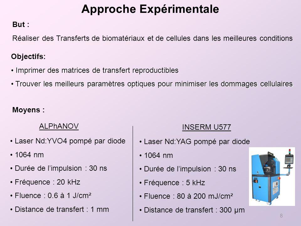 8 Approche Expérimentale But : Réaliser des Transferts de biomatériaux et de cellules dans les meilleures conditions Moyens : Laser Nd:YAG pompé par diode 1064 nm Durée de limpulsion : 30 ns Fréquence : 5 kHz Fluence : 80 à 200 mJ/cm² Distance de transfert : 300 µm INSERM U577 ALPhANOV Laser Nd:YVO4 pompé par diode 1064 nm Durée de limpulsion : 30 ns Fréquence : 20 kHz Fluence : 0.6 à 1 J/cm² Distance de transfert : 1 mm Objectifs: Imprimer des matrices de transfert reproductibles Imprimer des matrices de transfert reproductibles Trouver les meilleurs paramètres optiques pour minimiser les dommages cellulaires Trouver les meilleurs paramètres optiques pour minimiser les dommages cellulaires