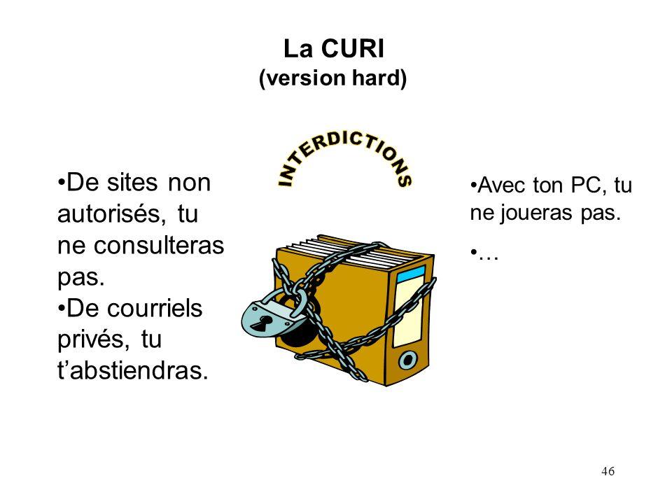 45 La nécessité dune charte dusage des ressources informatiques (CURI) Nécessité pour la bonne gestion de lentreprise (par exemple, cas du salarié qui