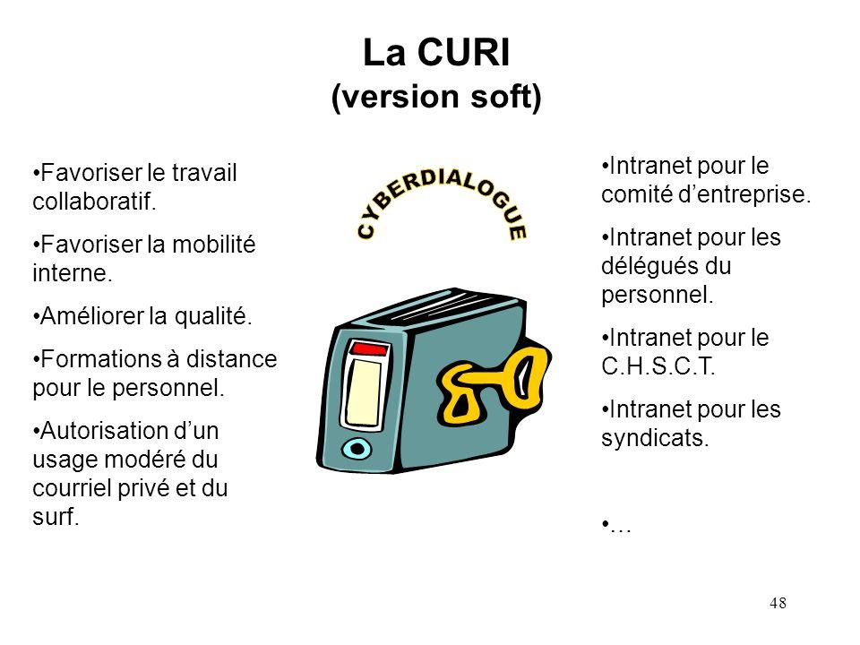 47 Position de la C.N.I.L. « Une interdiction générale et absolue de toute utilisation dInternet à des fins autres que professionnelles ne paraît pas