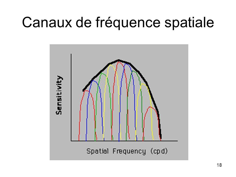 18 Canaux de fréquence spatiale