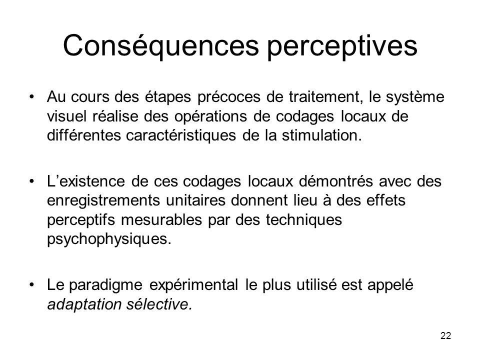 22 Conséquences perceptives Au cours des étapes précoces de traitement, le système visuel réalise des opérations de codages locaux de différentes cara
