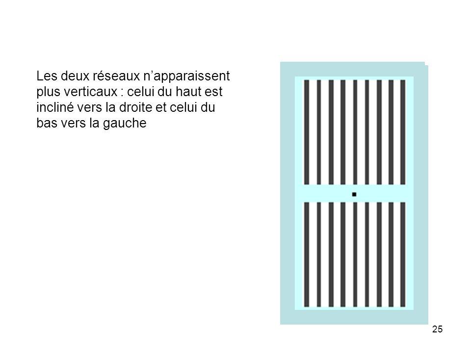 25 Les deux réseaux napparaissent plus verticaux : celui du haut est incliné vers la droite et celui du bas vers la gauche