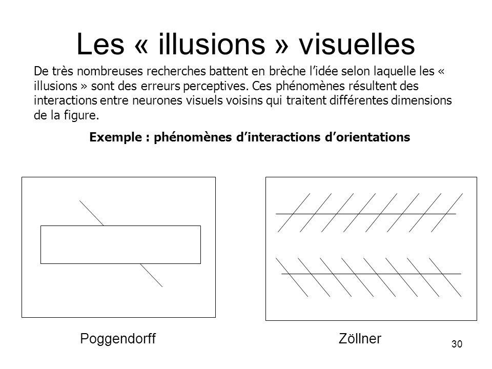 30 Les « illusions » visuelles De très nombreuses recherches battent en brèche lidée selon laquelle les « illusions » sont des erreurs perceptives. Ce