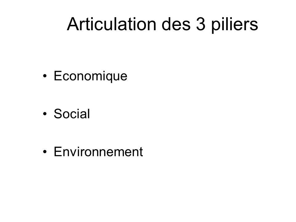 Articulation des 3 piliers Economique Social Environnement