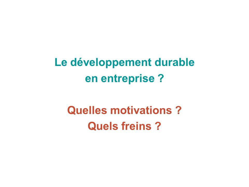 Le développement durable en entreprise Quelles motivations Quels freins
