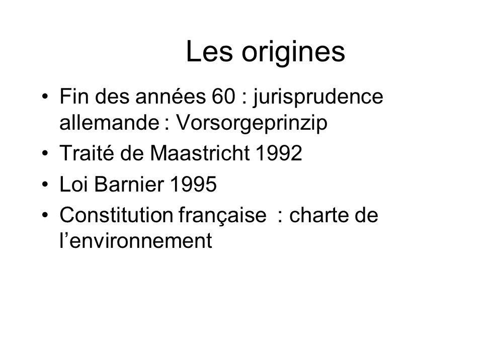 Les origines Fin des années 60 : jurisprudence allemande : Vorsorgeprinzip Traité de Maastricht 1992 Loi Barnier 1995 Constitution française : charte de lenvironnement