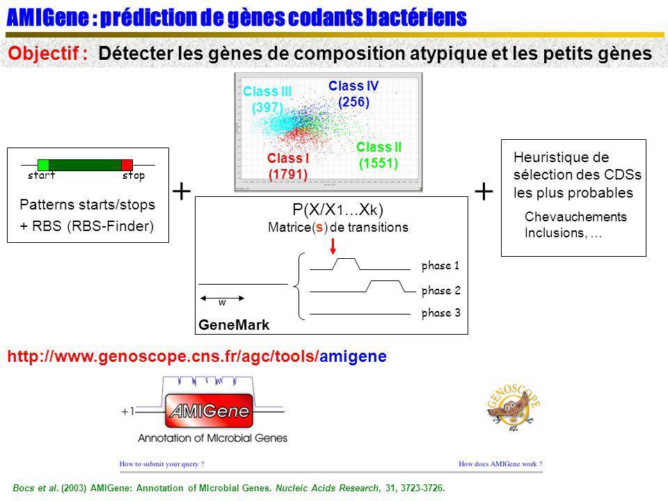 AMIGene : prédiction de gènes codants bactériens Objectif : Détecter les gènes de composition atypique et les petits gènes startstop Patterns starts/s