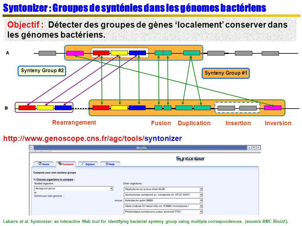 Syntonizer : Groupes de synténies dans les génomes bactériens Objectif : Détecter des groupes de gènes localement conserver dans les génomes bactérien