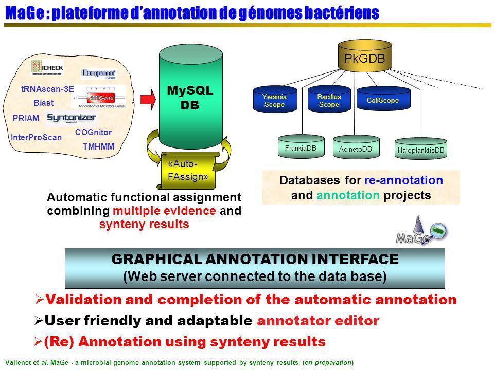 MaGe : plateforme dannotation de génomes bactériens PkGDB AcinetoDB Yersinia Scope HaloplanktisDB Bacillus Scope ColiScope FrankiaDB Databases for re-