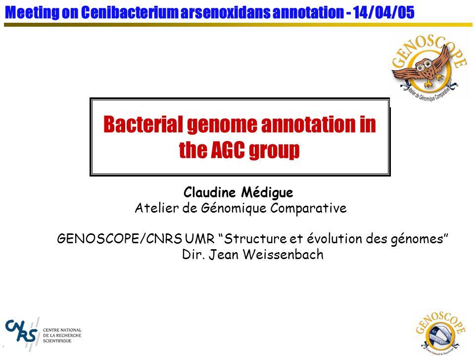 S. Cruveiller presentation Gene model construction : AMIMat strategy