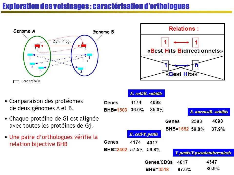 Gène orphelin Genome A Genome B Dyn.Prog.