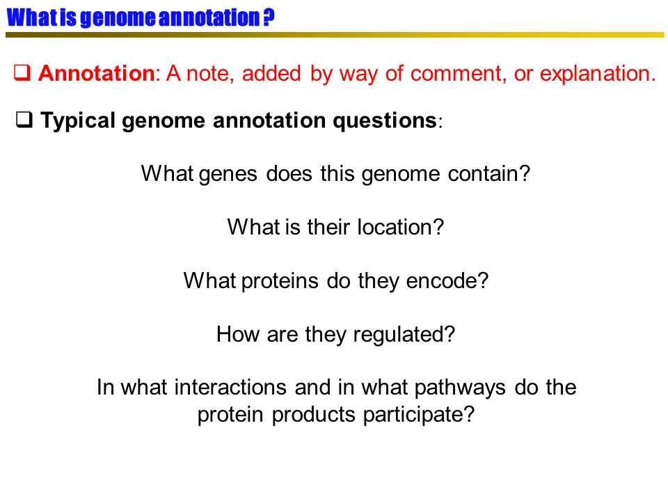 détection par contenu Three annotation level Syntaxic/structural annotation Location of genes (both protein- coding genes and RNA genes) Location of regulatory signals Location of other regions (such as repeats, etc) EMBL Functionnal annotation Biological function of the genes Operators family SWISSPROT Static view of the genome Dynamic view of the genome Process annotation (or relationnal) metabolic networks regulatory processes molecular assembly … How genomic objets are linked to build functionnal module, responsible for specific task in the cell such as : Experimental results L.
