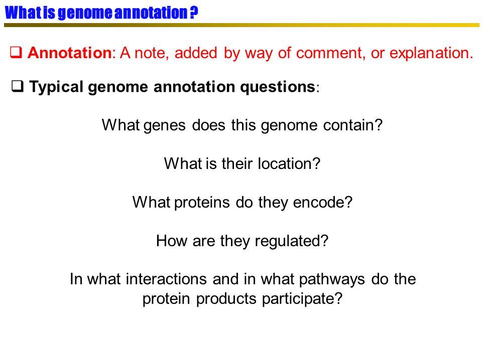 SGBD relationnel (MySQL) SGBD relationnel (MySQL) PkGDB : Procaryotic Genome DataBase Objectif : données dannotation propres, cohérentes, à la source des méthodologies de génomique comparative Génomes complets (Refseq NCBI) Génomes complets (Refseq NCBI) Intégration dans PkGDB Gestion des frameshifts Homogénéité des données Ré-annotation syntaxique Complétion /correction des données
