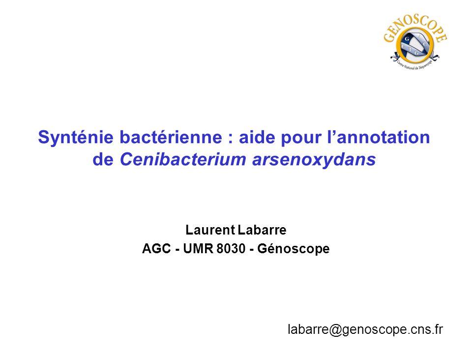 Synténie bactérienne : aide pour lannotation de Cenibacterium arsenoxydans Laurent Labarre AGC - UMR 8030 - Génoscope labarre@genoscope.cns.fr