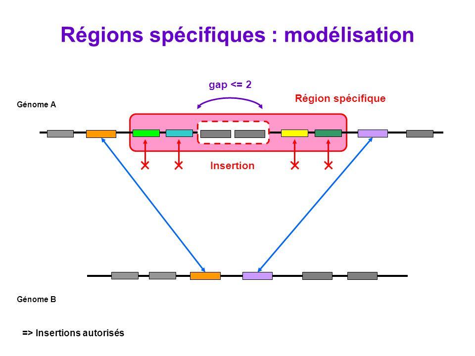 Région spécifique gap <= 2 Insertion Génome A Génome B => Insertions autorisés Régions spécifiques : modélisation