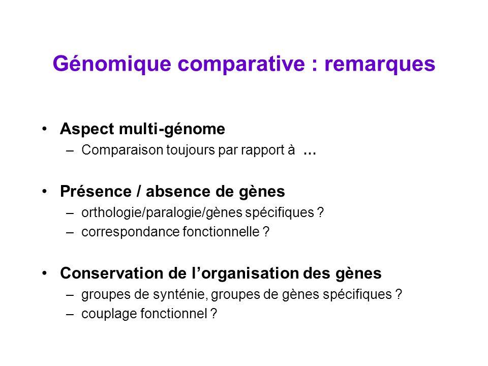 Génomique comparative : remarques Aspect multi-génome –Comparaison toujours par rapport à … Présence / absence de gènes –orthologie/paralogie/gènes sp