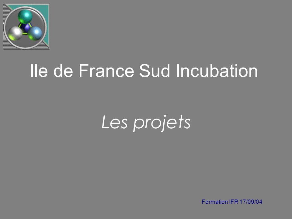 Formation IFR 17/09/04 Ile de France Sud Incubation Les projets