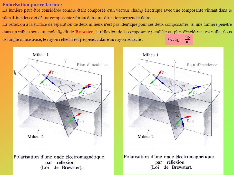 Polarisation par réflexion : La lumière peut être considérée comme étant composée d'un vecteur champ électrique avec une composante vibrant dans le pl