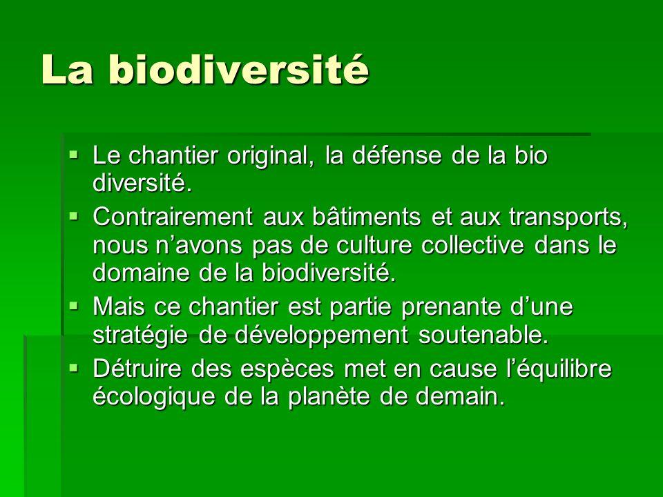 La biodiversité Le chantier original, la défense de la bio diversité.