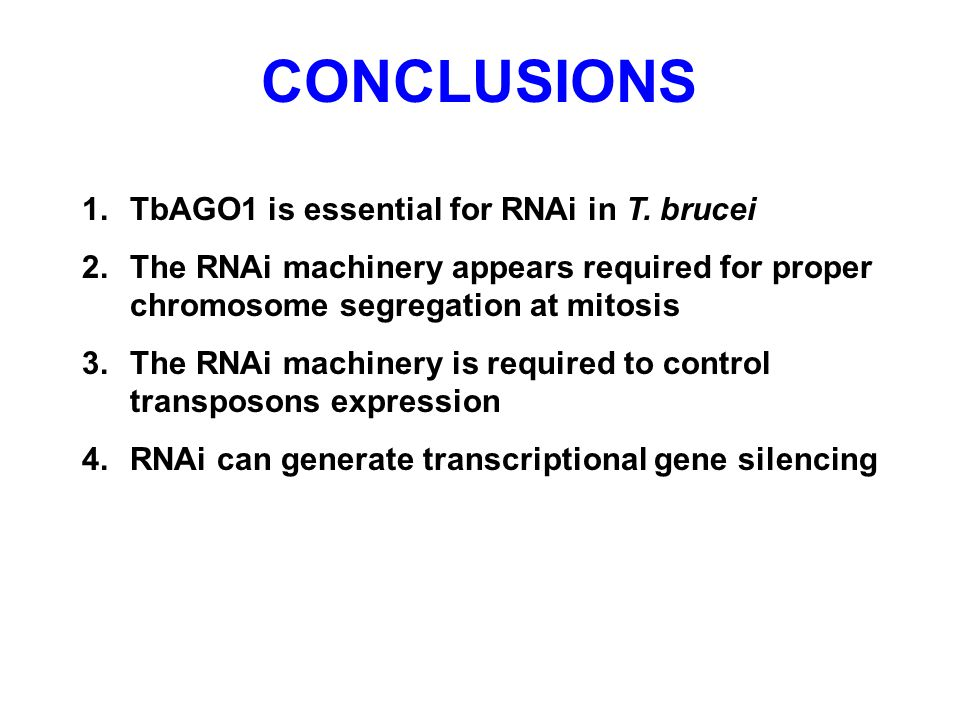 CONCLUSIONS 1. TbAGO1 is essential for RNAi in T. brucei 2. The RNAi machinery appears required for proper chromosome segregation at mitosis 3. The RN
