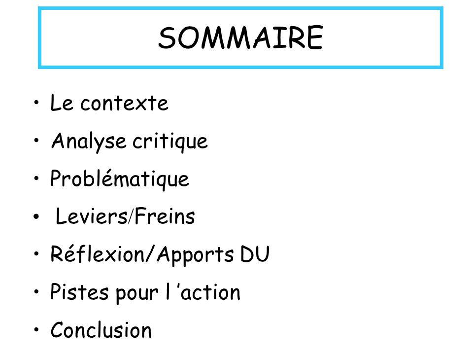 SOMMAIRE Le contexte Analyse critique Problématique Leviers / Freins Réflexion/Apports DU Pistes pour l action Conclusion