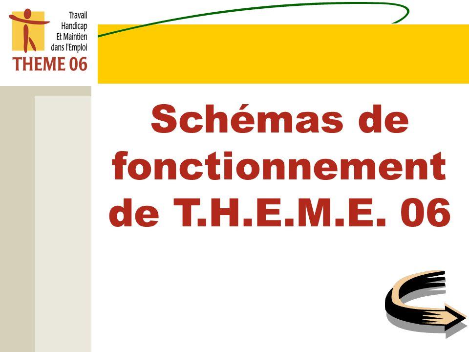 Schémas de fonctionnement de T.H.E.M.E. 06
