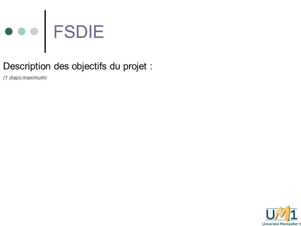 FSDIE Description du budget prévisionnel global (recettes et dépenses – Vous pouvez vous appuyer sur la P.6 du dossier FSDIE pour remplir cette diapositive : 1 diapo maxi)