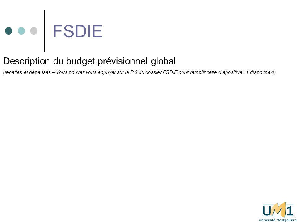 FSDIE Détail de la subvention demandée dans le cadre du FSDIE (sur quelles dépenses, pour quels montants .