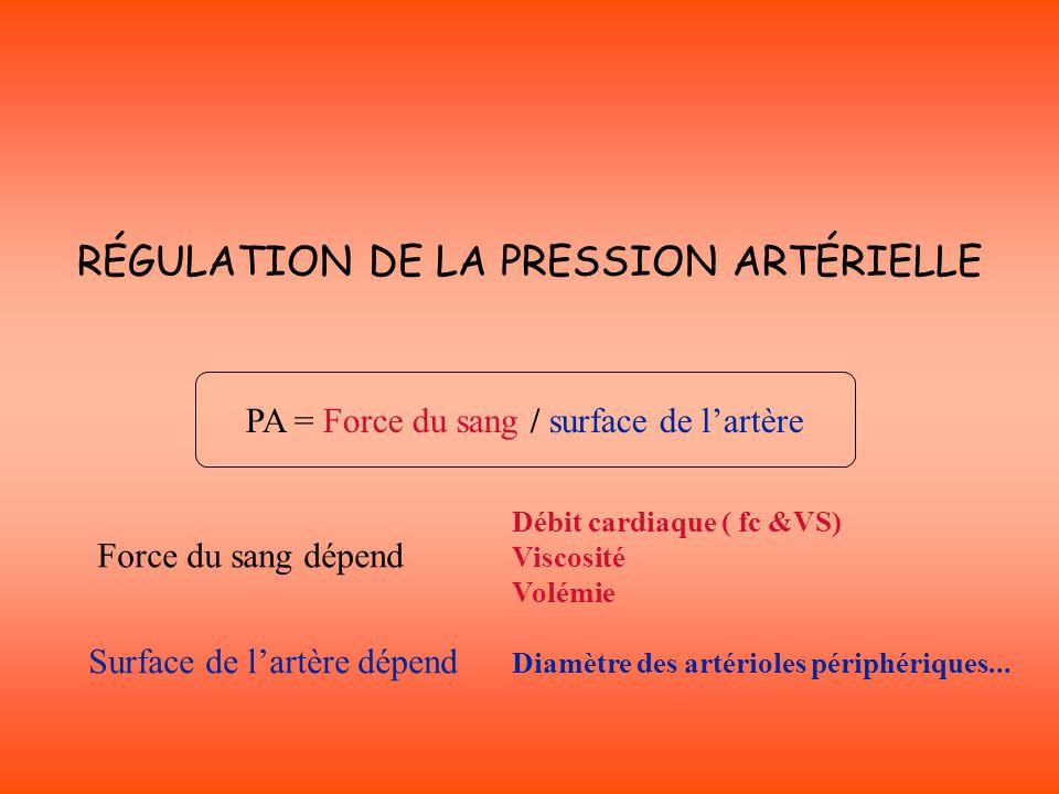 RÉGULATION DE LA PRESSION ARTÉRIELLE Débit cardiaque ( fc &VS) Viscosité Volémie Diamètre des artérioles périphériques... Force du sang dépend Surface