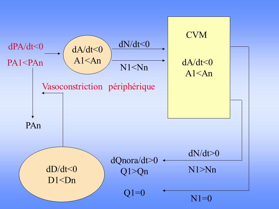 dA/dt<0 A1<An dD/dt<0 D1<Dn dA/dt<0 A1<An dPA/dt<0 PA1<PAn dN/dt<0 N1<Nn N1=0 dN/dt>0 dQnora/dt>0 Q1>Qn PAn Vasoconstriction périphérique CVM N1>Nn Q1