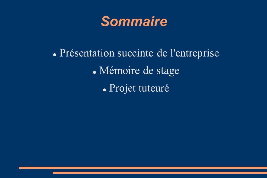 Sommaire Présentation succinte de l'entreprise Mémoire de stage Projet tuteuré