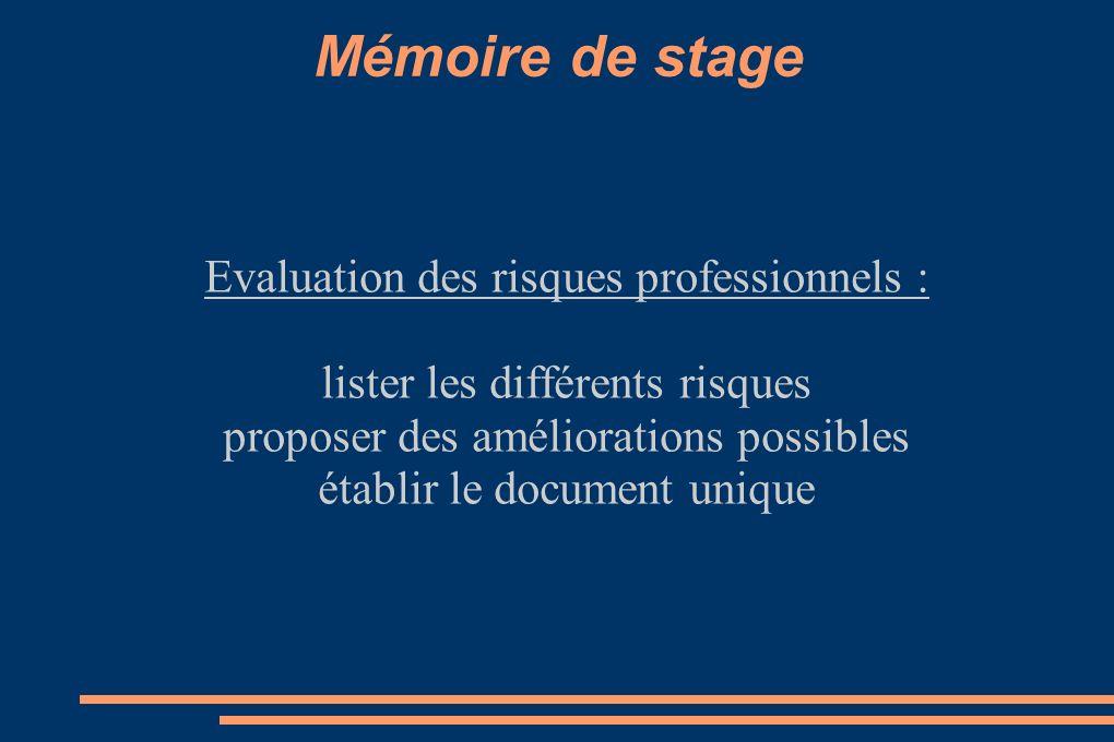 Mémoire de stage Evaluation des risques professionnels : lister les différents risques proposer des améliorations possibles établir le document unique