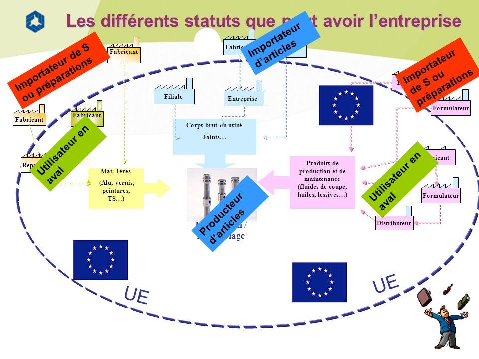 7 Les différents statuts que peut avoir lentreprise Fabricant Filiale Fabricant Formulateur Importateur de S ou préparations Importateur darticles Imp