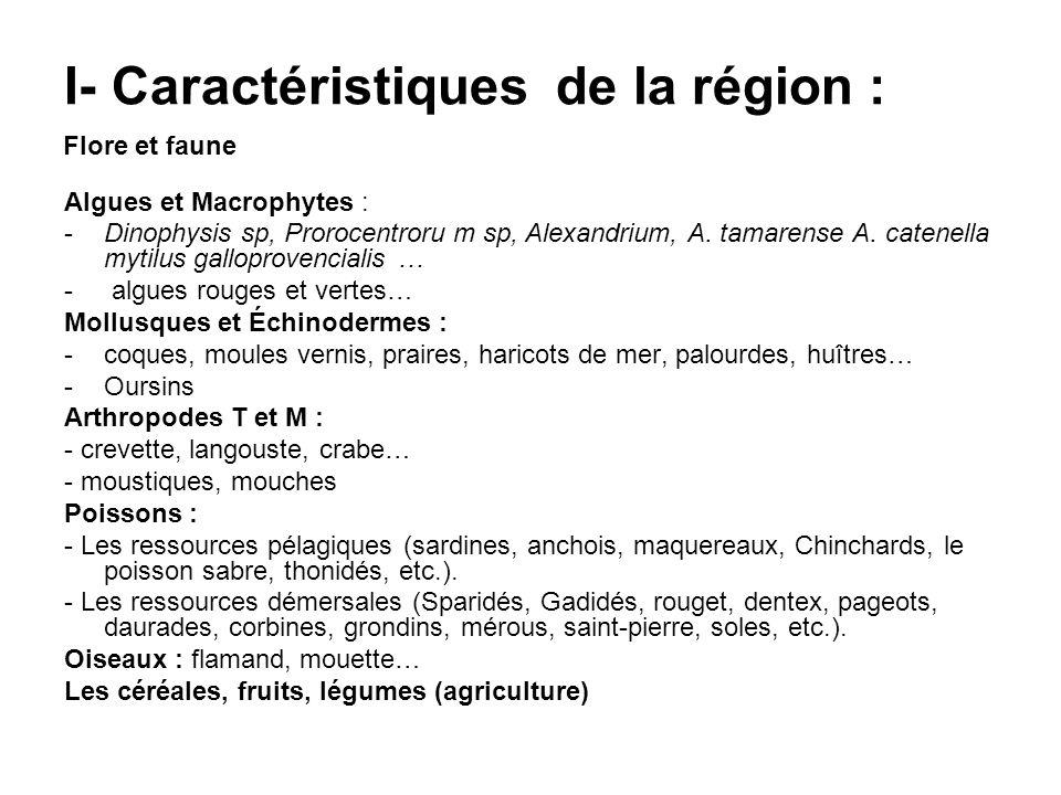 I- Caractéristiques de la région : Algues et Macrophytes : -Dinophysis sp, Prorocentroru m sp, Alexandrium, A. tamarense A. catenella mytilus gallopro