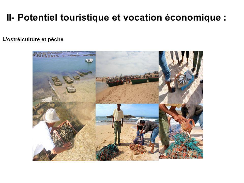 II- Potentiel touristique et vocation économique : Lostréiculture et pêche