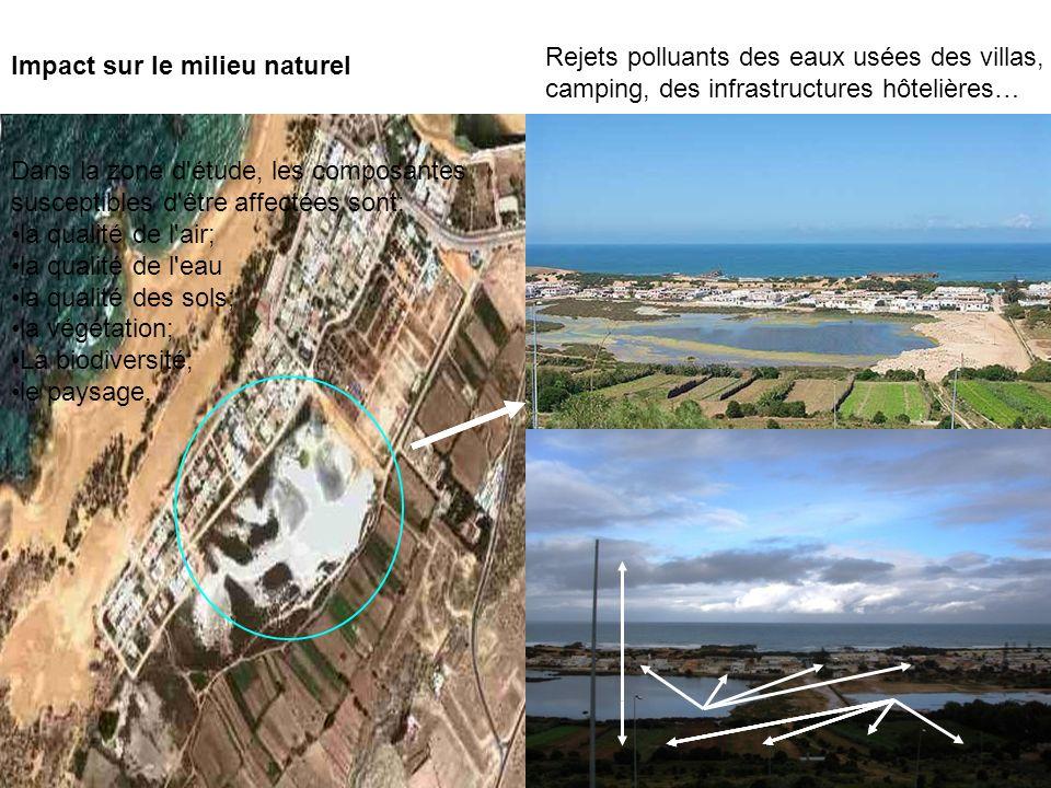 Impact sur le milieu naturel Rejets polluants des eaux usées des villas, camping, des infrastructures hôtelières… Dans la zone d'étude, les composante