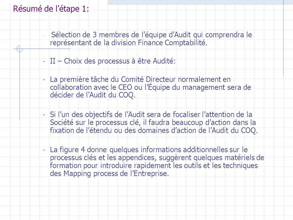 Choix de léquipe dAudit: ( Steering Comitee) ou Comité Directeur - Il sera de trois personne: le Leader de léquipe dAudit, le Directeur de lAudit, un