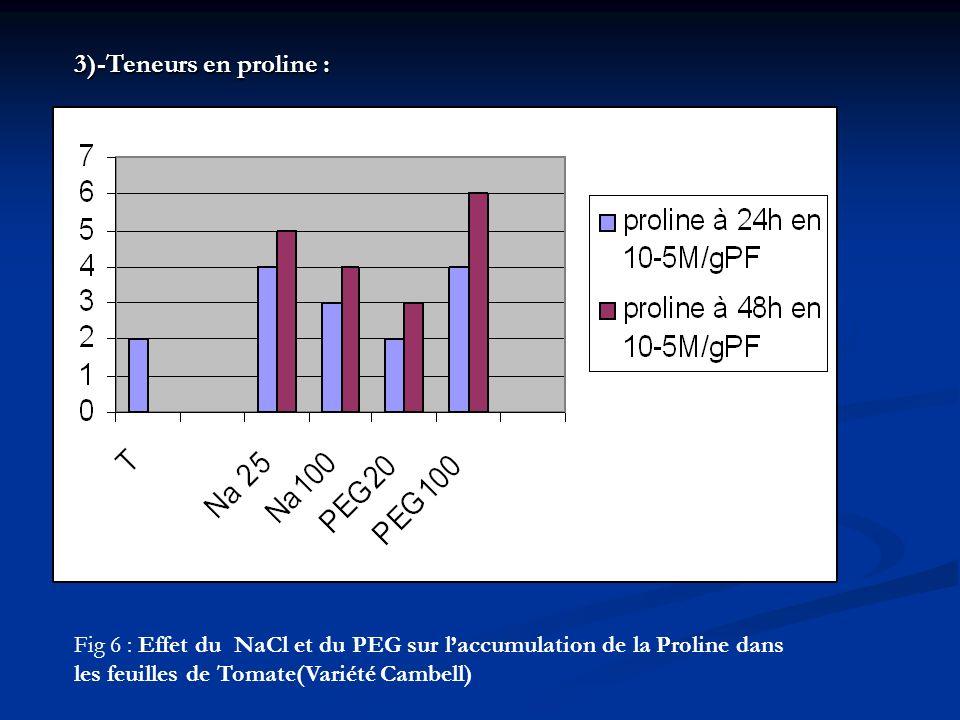 Fig 6 : Effet du NaCl et du PEG sur laccumulation de la Proline dans les feuilles de Tomate(Variété Cambell) 3)-Teneurs en proline :
