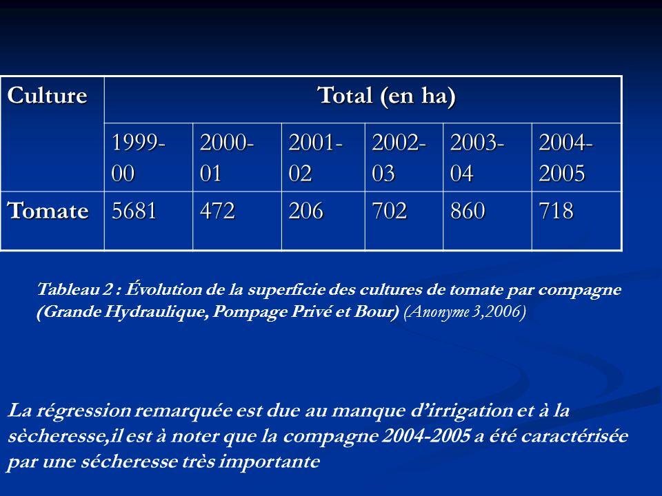 Culture Total (en ha) Total (en ha) 1999- 00 2000- 01 2001- 02 2002- 03 2003- 04 2004- 2005 Tomate5681472206702860718 Tableau 2 : Évolution de la supe